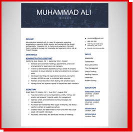 Resume Sample 01